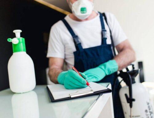 شركة مكافحة حشرات في الفجيرة |0501021422 |ابادة فورية